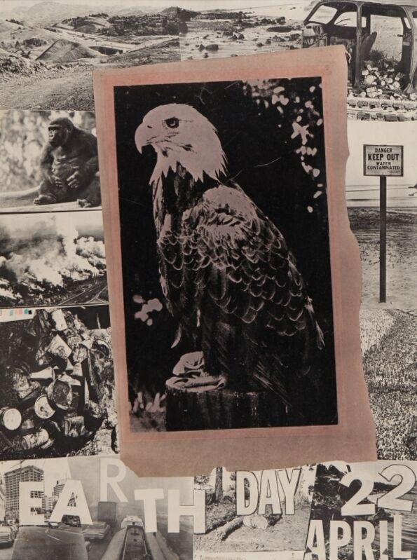 Robert Rauschenberg, 'Poster for the Earth Day for the benefit of the American Environment Foundation in Washington', printed in 1970, Print, Aste Boetto