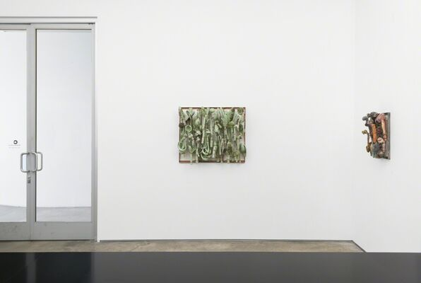 Dave Hicks: Field Language, installation view