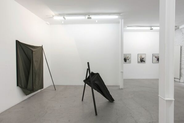 Elena del Rivero - My Friends and other Animals, installation view