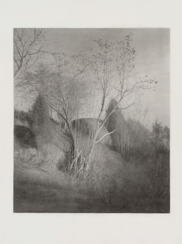 Gunnel Wåhlstrand, 'The Rowan Tree', 2017, Painting, Ink wash on paper, Andréhn-Schiptjenko