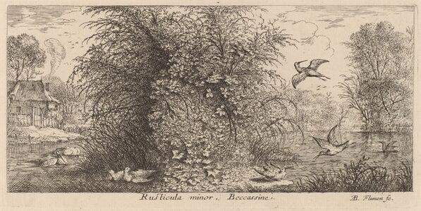 Albert Flamen, 'Rusticula minor, The Snipe'