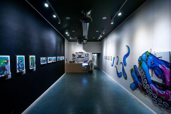Binho Ribeiro, installation view