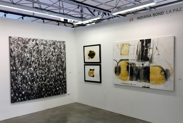 Indiana Bond at PArC 2017, installation view