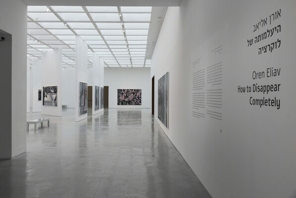 How to Disappear Completetly, installation view