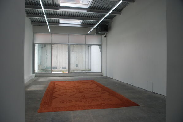 Rena Detrixhe: Place Out of Matter, installation view