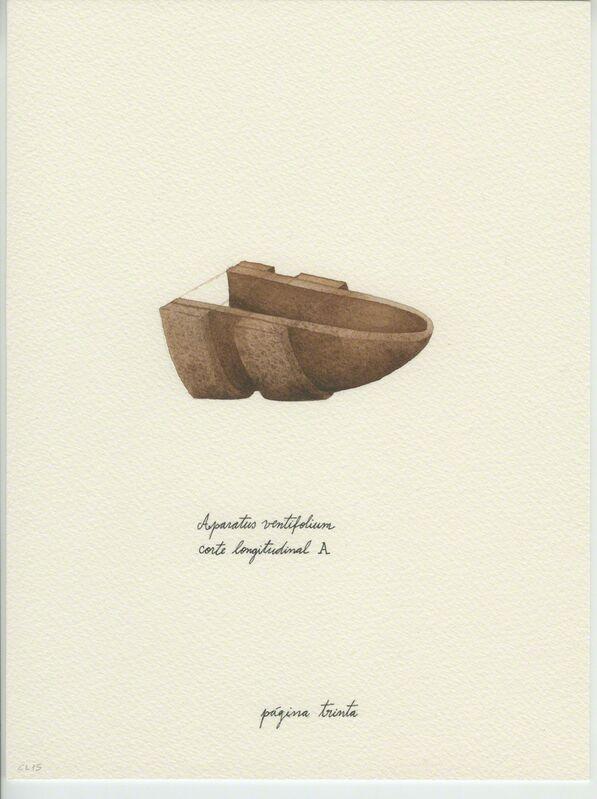 Catarina Leitão, 'Cadernos de Campo #9', 2015, Drawing, Collage or other Work on Paper, Watercolor, Carlos Carvalho- Arte Contemporanea