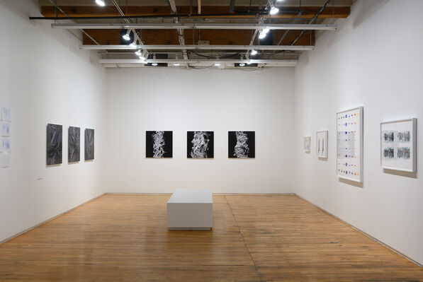 Trace Copy Render, installation view