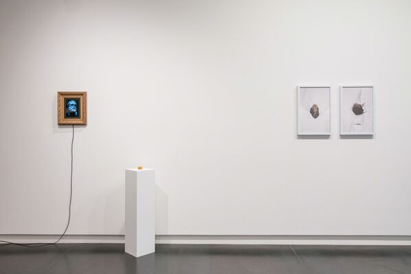 The Great Debate About Art, installation view