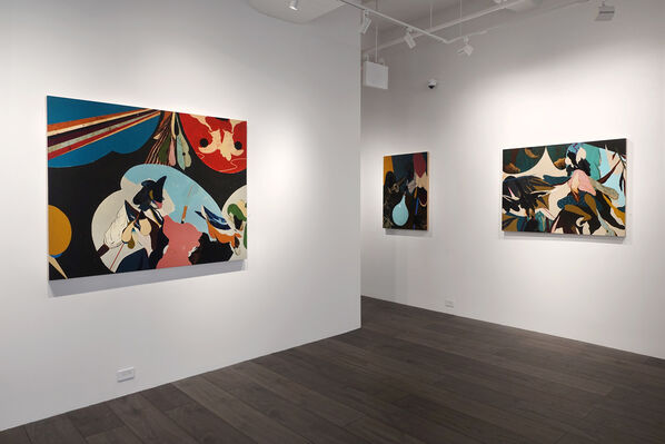 Kenichi Hoshine: The Magician and The Thief, installation view