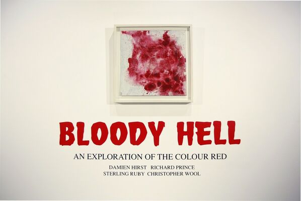Bloody Hell | An Exploration of the Colour Red, installation view