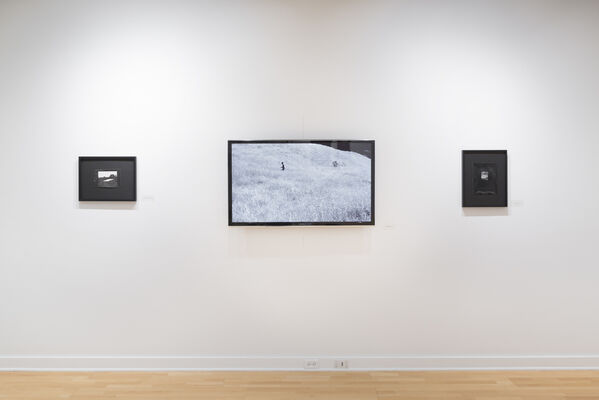 Dionne Lee: Trap and Lean-to, installation view