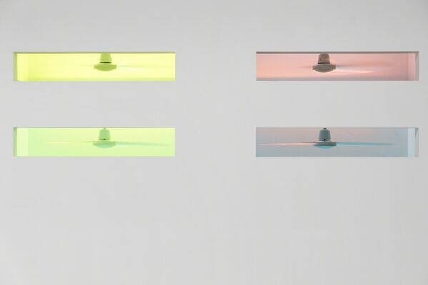 Mika Rottenberg, installation view