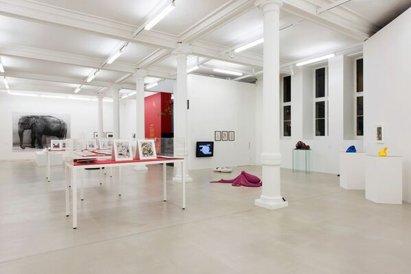 ANIMALITY, installation view