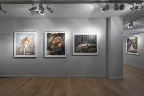 Jocelyn Lee: The Appearance of Things, installation view