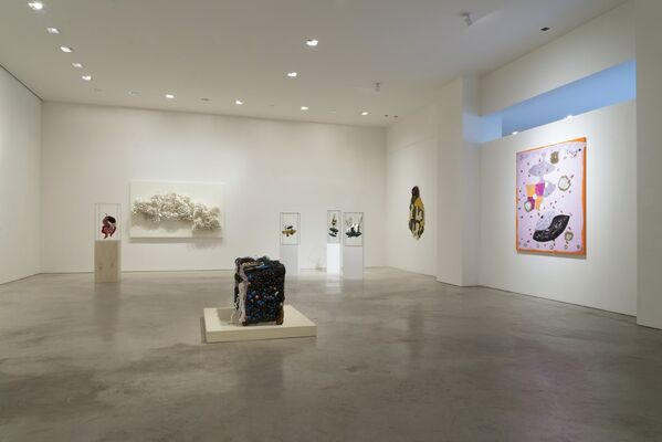 The Black Sphinx II, installation view
