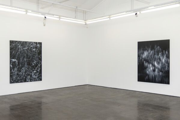 Tangled Hierarchies, installation view