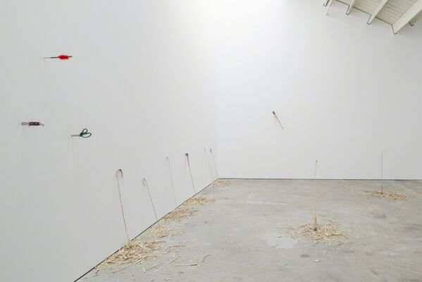 David Adamo - Untitled (Music for Strings), installation view