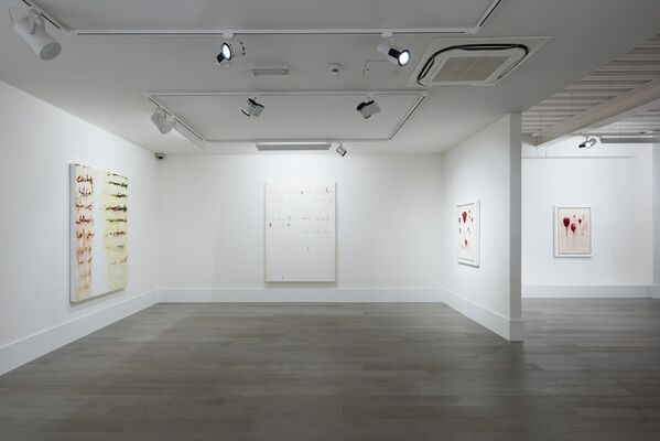 Azadeh Razaghdoost: Recipe for a Poem, installation view