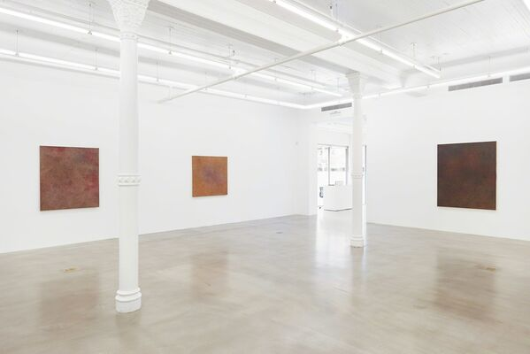 Byron Kim: Mud Root Ochre Leaf Star, installation view