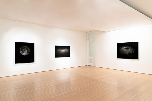 Mitchell Lonas: Solace, installation view