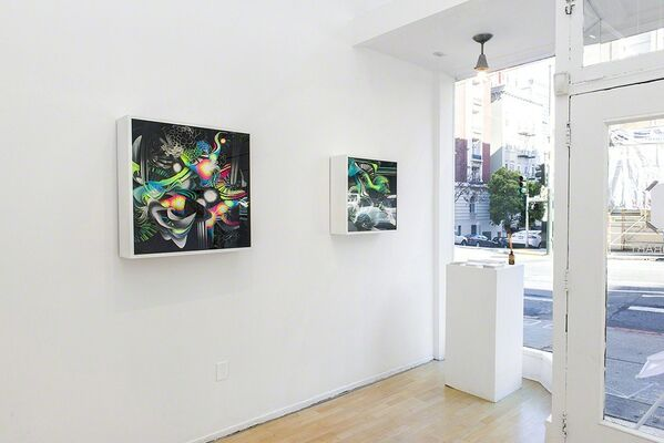 """Crystal Wagner: """"Microcosm"""", installation view"""
