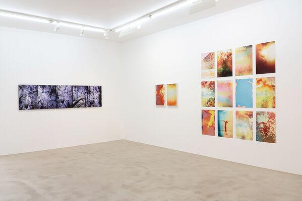 Full Bloom, installation view