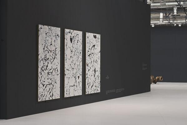 Claroscuro, installation view