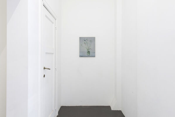 NOUS, installation view