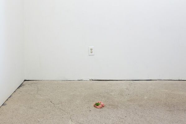 Andrew D. Olivo 6.7.89-6.7.18, installation view