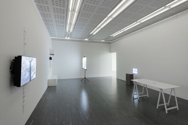 The Grasping, installation view