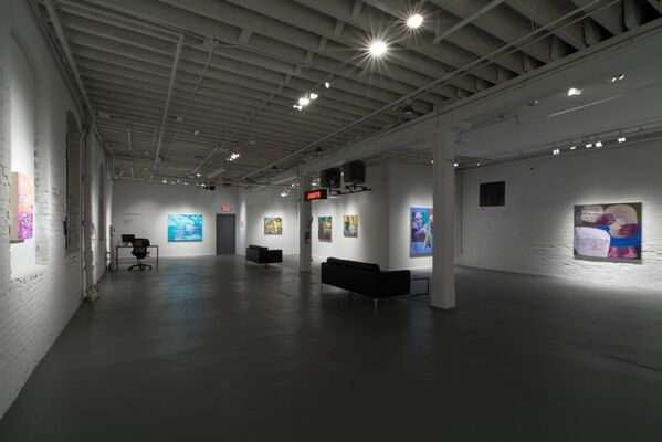 NOT COLOR ABSOLUTE, installation view