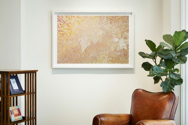 Hovering: Photographs at the Boundaries of Nature, installation view