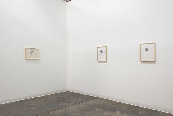 Tom Knechtel: The Reader of His Own Self, installation view