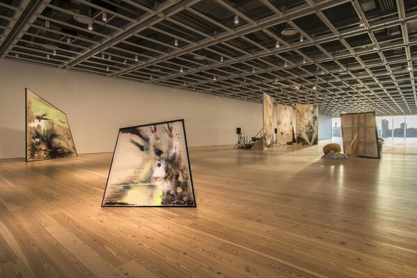 Open Plan: Lucy Dodd, installation view