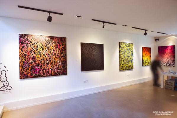 Motion by Rafael Sliks, installation view