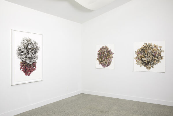 Sanderson Contemporary Art at Sydney Contemporary 2019, installation view
