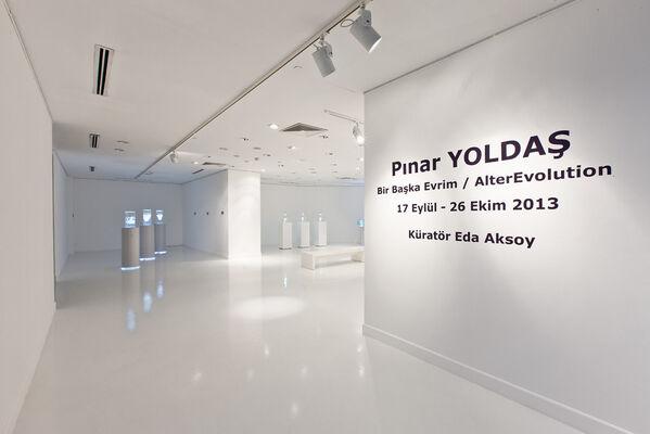 Pınar Yoldaş - Bir Başka Evrim/AlterEvolution, installation view