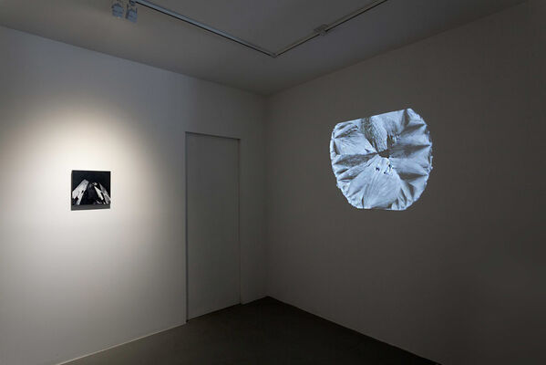 CARLY WAITO: MICROGEOGRAPHICA, installation view