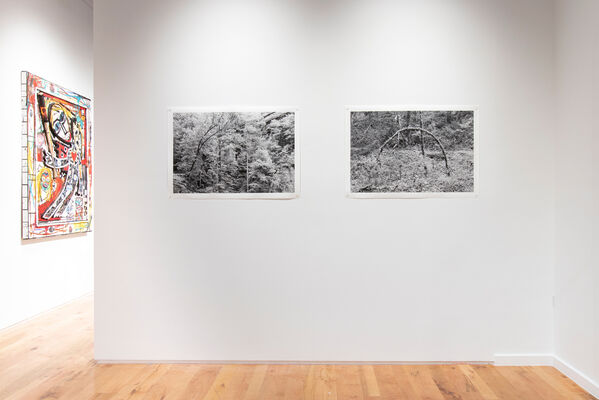 Polemics of the Landscape, installation view