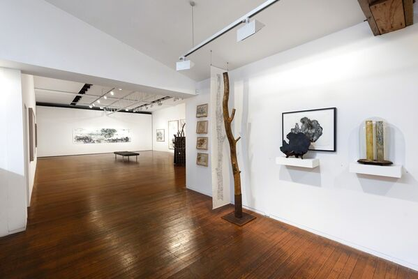 One Hundred and One Insect Life Stories, installation view