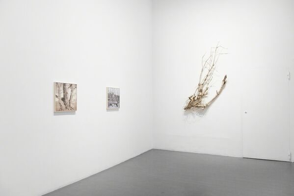 Susanne Johansson, Johanna Karlsson & Petra Lindholm: Below the Horizon, installation view