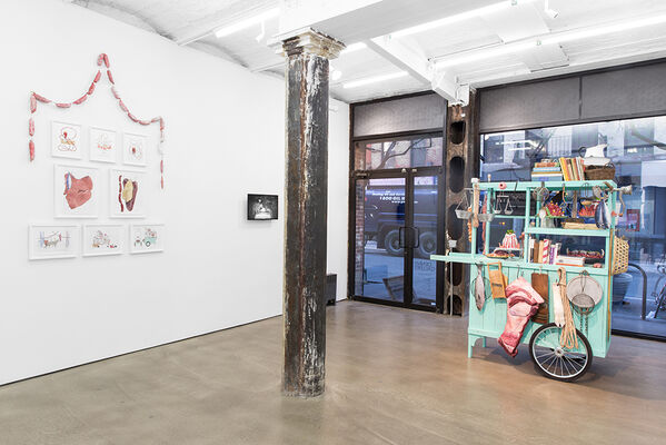 Crossing the Wild Line, installation view