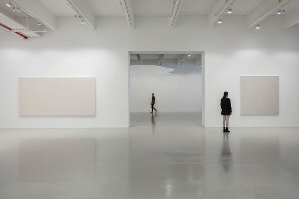 Mark Wallinger. Study for Self Reflection, installation view