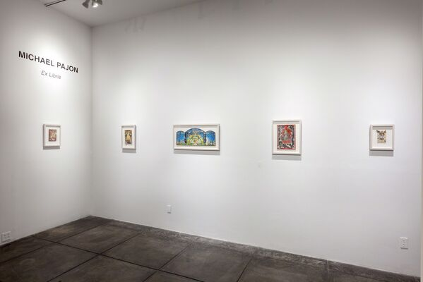 Michael Pajon: Ex Libris, installation view
