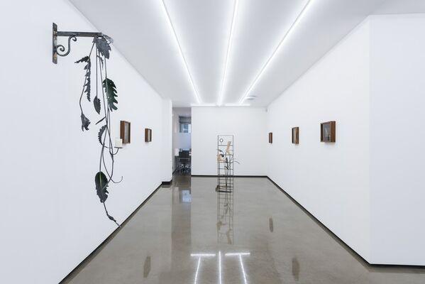 Tony Romano : Night Thoughts, installation view