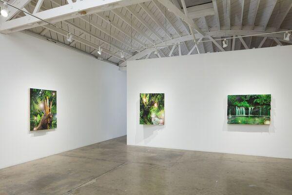 Sarah Cromarty: WISHFUL THINKIN', installation view