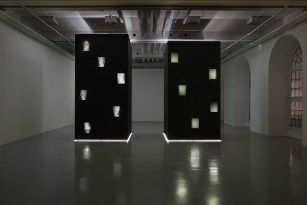Anicka Yi. Jungle Stripe, installation view