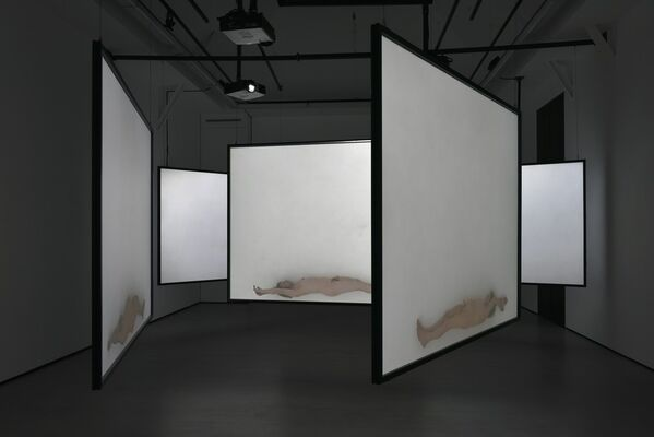 All that beauty, installation view