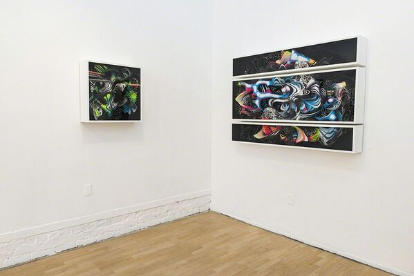 "Crystal Wagner: ""Microcosm"", installation view"