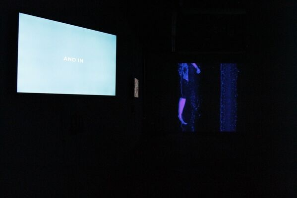 Edible Planets / Soylent Dialogues, installation view